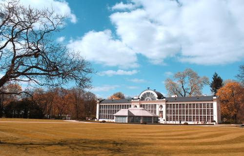 Pałac zdjęcie